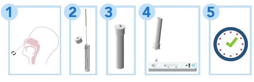 JOYSBIO Test Kit How to Use