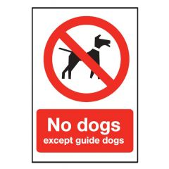 Red 'No dogs Except Guide Dogs' Flexible Plastic Sign 20x15cm