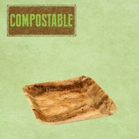 "Palm Leaf Compostable Square Plate 6.75"" / 17cm"