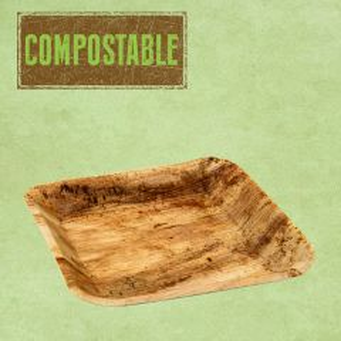 "Palm Leaf Compostable Square Plate 9.5"" / 24cm"
