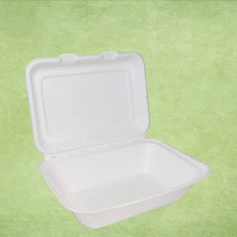 "Bagasse Eco-Friendly Medium Food Box 7x5"" / 18x12.5cm"