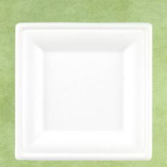 """Bagasse Eco-Friendly Square Plate 10"""" / 26cm"""