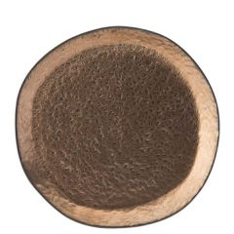 "Midas Stoneware Plate 10.25"" / 26cm"