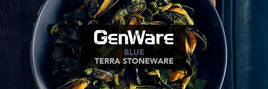 Blue Terra Stoneware Banner