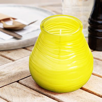 Bolsius Citronella Candles from Stephensons Catering Suppliers