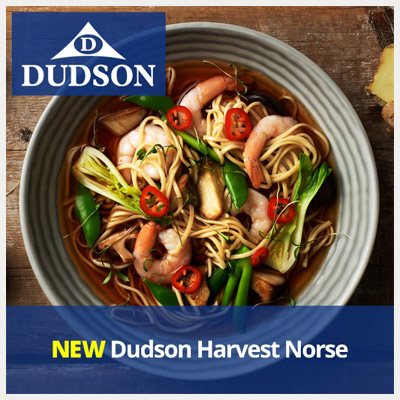 NEW Dudson Harvest Norse