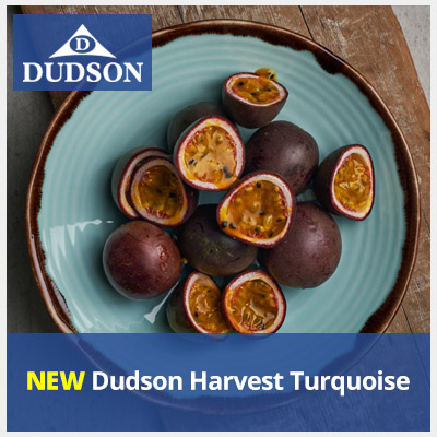 NEW Dudson Harvest Turquoise