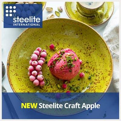 NEW Steelite Craft Apple